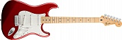 Fender Standard Stratocaster MN Candy Apple Red Tint